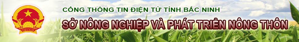 Banner mới SNNPTNT